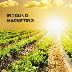 見込み客から選ばれ続ける企業へ。BtoB企業のインバウンドマーケティングの進め方